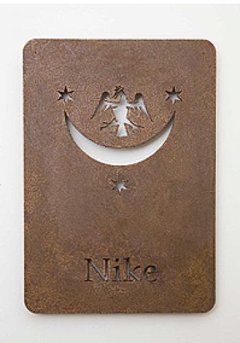 Camera Nike